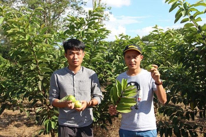 学生在农地采集信息(商学院_黄炳蔚摄影).jpg
